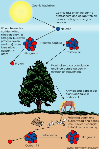 All about carbon dating