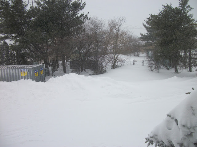 Blizzard of 2013, Danvers, Massachusetts