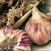 15 Tanaman yang Dapat dijadikan Obat Herbal