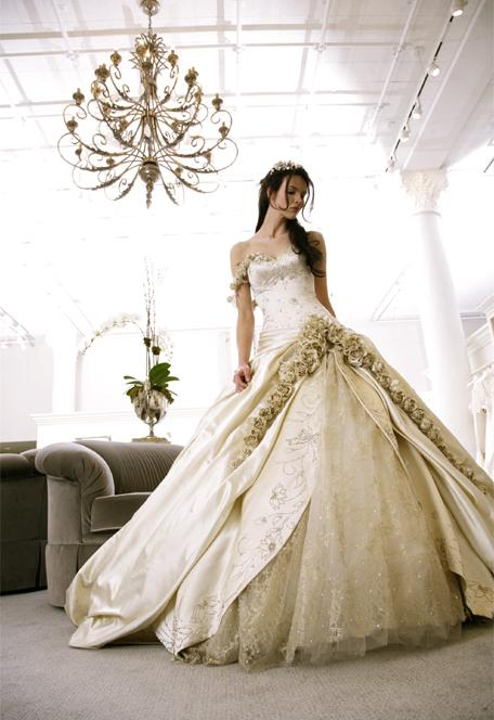 Princess Wedding Dresses Pics : Princess wedding dresses can be adorned with as a great deal or
