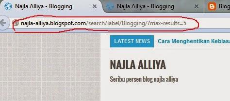 Cara memasang max-results di blogspot
