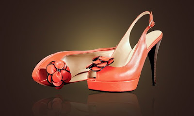 poza cu pantofi rosii cu floricica