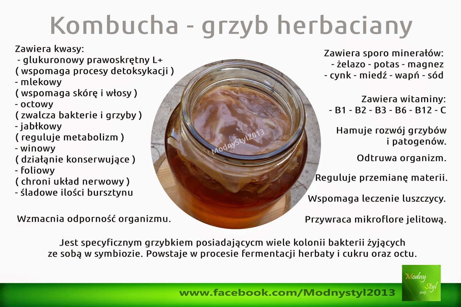 Kombucha czyli grzyb herbaciany
