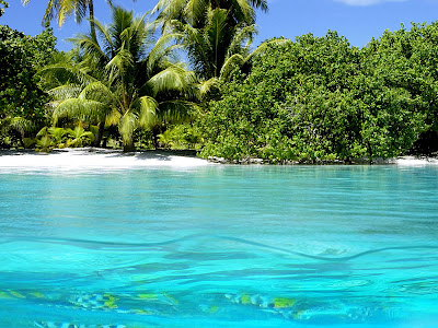 Blue sea in beach wallpapers