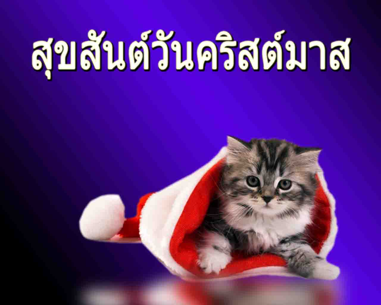 Merry Christmas in Thai - Happy New Year 2017