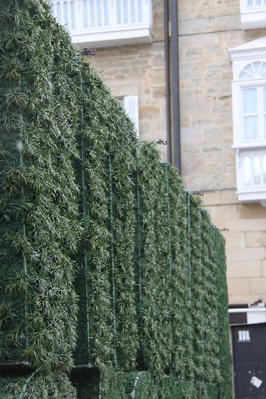 Escultura vegetal en vitoria jardines verticales y for Ciudad jardin vitoria