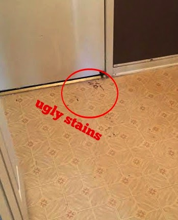 Home on hidden oaks affordable flooring upgrade for How to get stains off linoleum floor