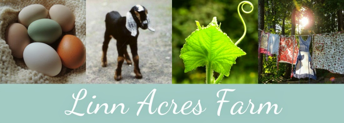 Linn Acres Farm
