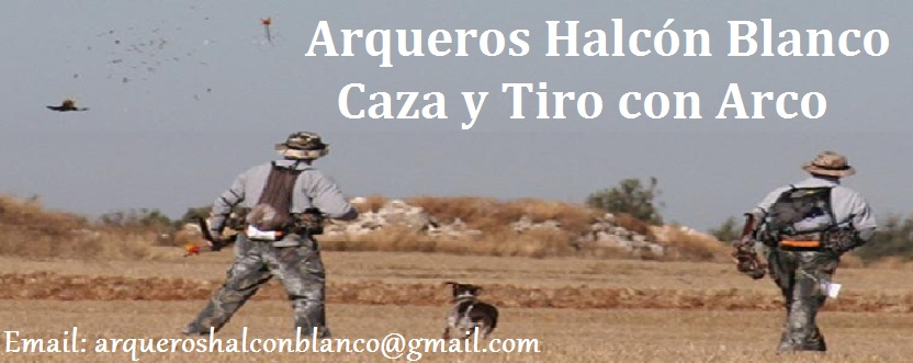 Arqueros Halcon Blanco
