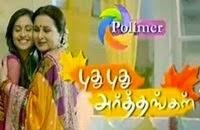 Puthu Puthu Arthangal 31-08-2015 | Polimer TV Serial