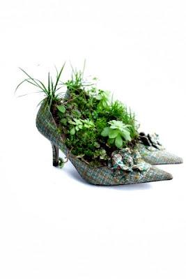 Jardins, sapato