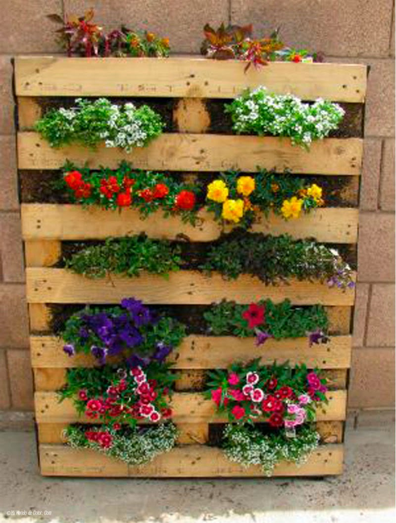 diy gardent with pallets