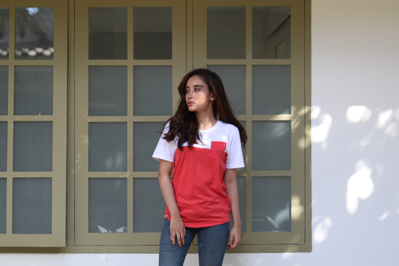 Collins Indonesia 8
