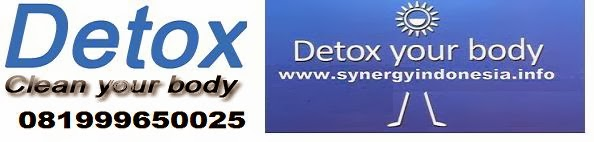 Detox Synergy Indonesia