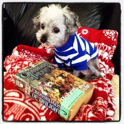Murchie sits on a red and white blanket, his head craned forward slightly and his t-shirt still on. In front of him lays a paperback copy of Crossroads of Twilight. Its cover features several people mounted on horses.