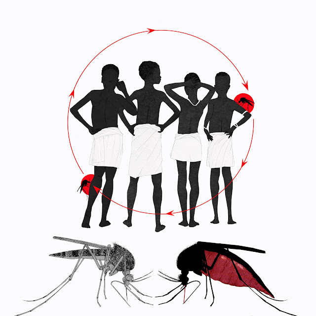 dibujo, infografia, enfermedades infecciosas, Africa