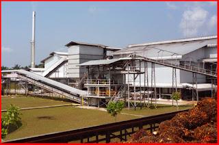 kos membangun kilang kelapa sawit