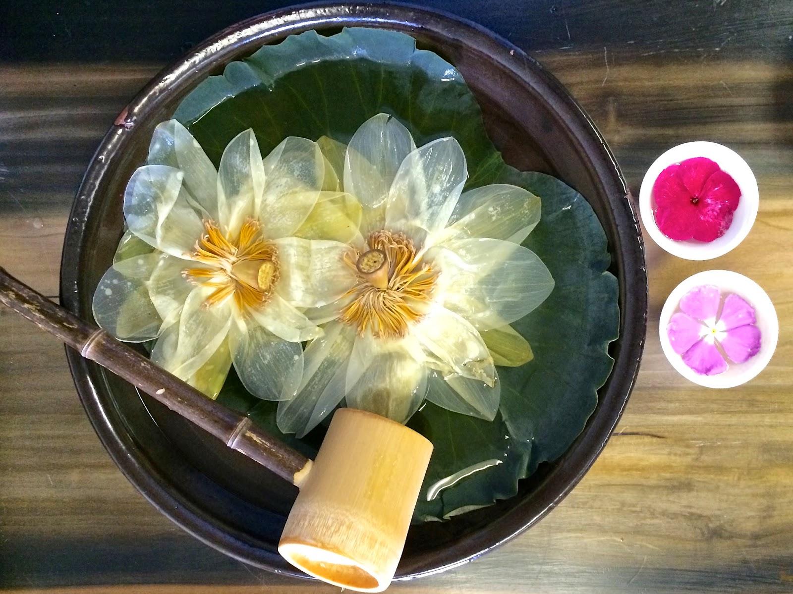 Handol Tearoom June 25th Tea Tasting Lotus Flower And Lotus
