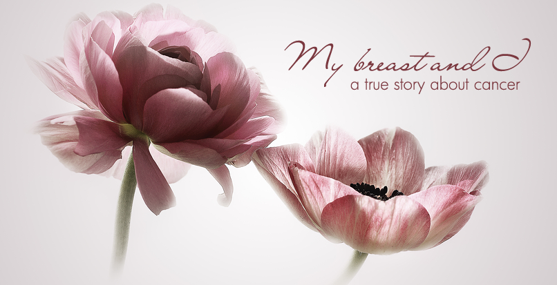 My breast and I, a true story about cancer