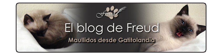 El blog de Freud