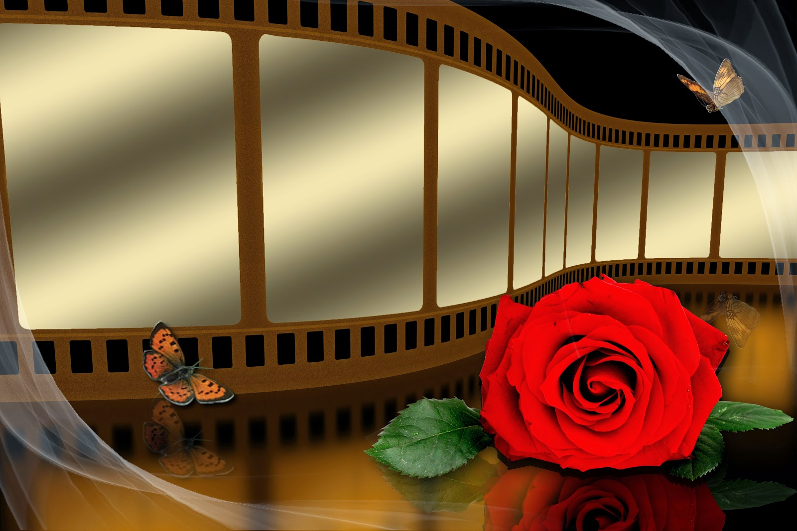 Glasses Frame Psd : Wedding pictures editing frame film template psd - StudioPk