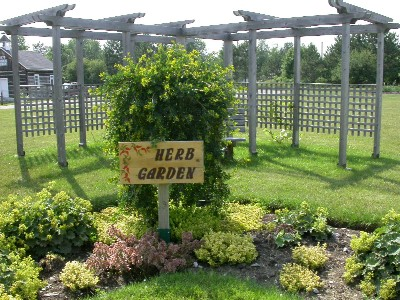 Lawn and Garden Planting a Outdoor Herb Garden
