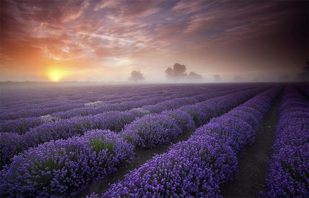 Multipost Maravillosas fotografías del mundo