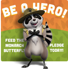 butterfly hero campaign banner