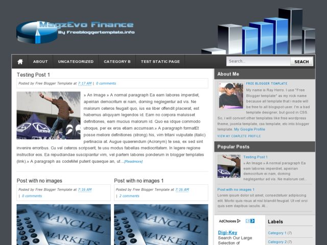 MagzEvo Finance Blogger Template