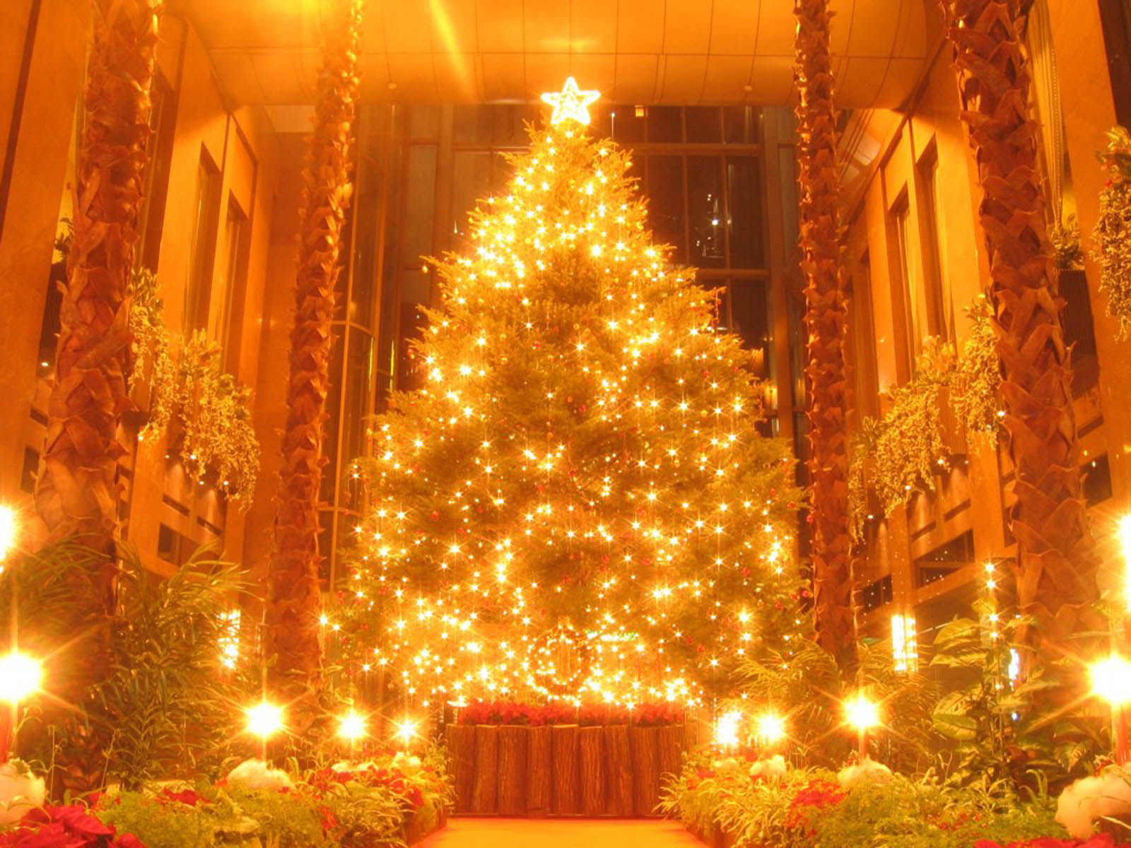 Wallpapers christmas tree decoration for Back ground decoration
