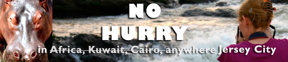 No Hurry in J.C.