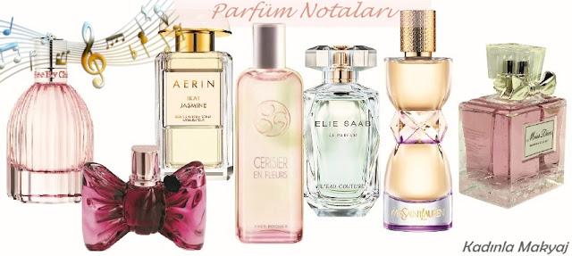 Parfüm Notaları