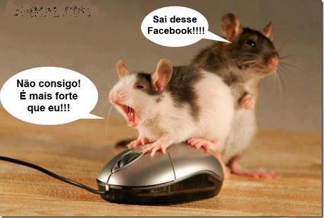 rato tendo dificuldades para sair do facebook