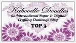 21 januari in de top 3 bij Kaboodle Doodles