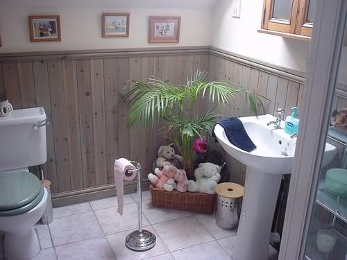 de decorar seu banheiro e também alguns banheiros que estão fora de