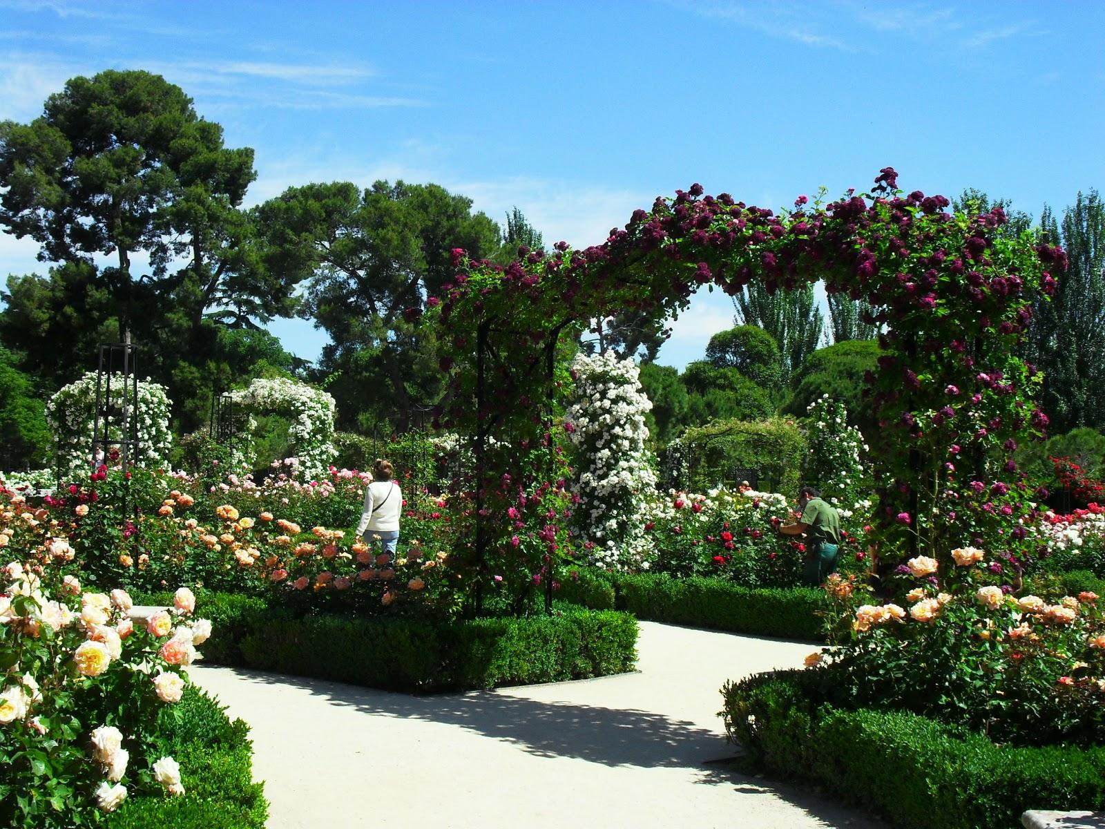 Arte y jardiner a el jard n de rosas - Disenos de jardineria ...
