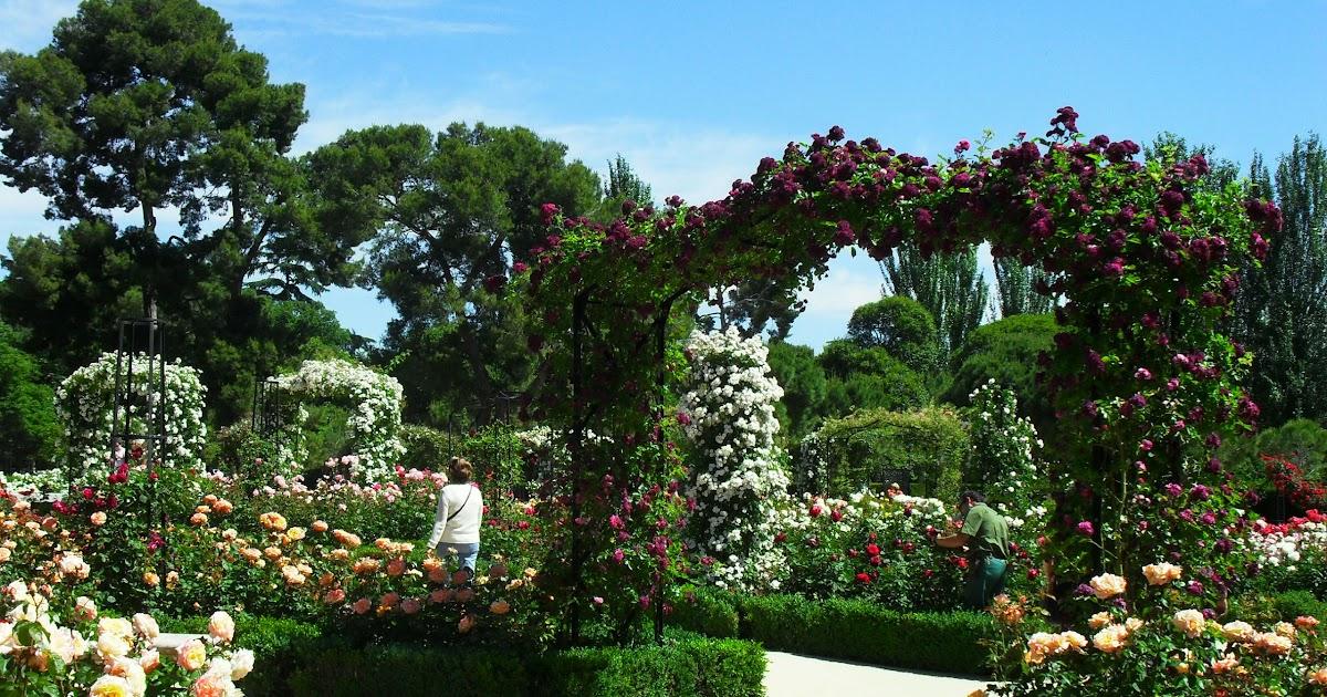 Arte y jardiner a dise o de jardines el jard n de rosas for Diseno de jardines 3d 7 0 keygen