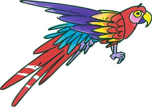 Insights parrot bird cartoon