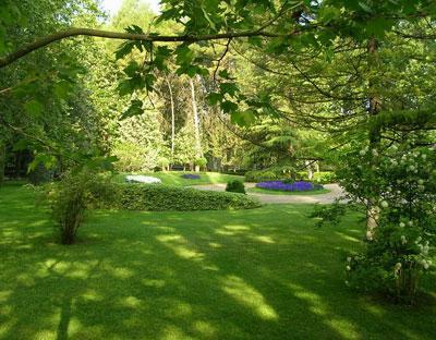 Arte y jardiner a arboles y arbustos para zonas sombr as for Antejardines rusticos
