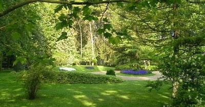Arte y jardiner a dise o de jardines arboles y arbustos for Arboles y arbustos de jardin