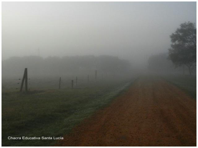 Niebla en la Chacra - Chacra Educativa Santa Lucía