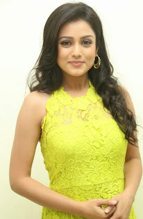 Actress Mishti Chakraborty Picture Gallery in Long Dress at Chinnadana Nee Kosam Audio Launch freshgallery.in15.jpg
