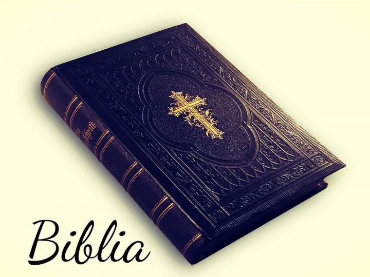 El libro de Josué como imagen del Apocalipsis