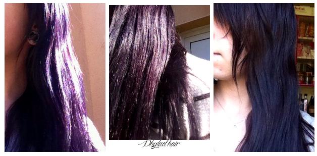 Henné Violet phylact'hair :: apprivoiser le naturel: mon retour (tant bien que