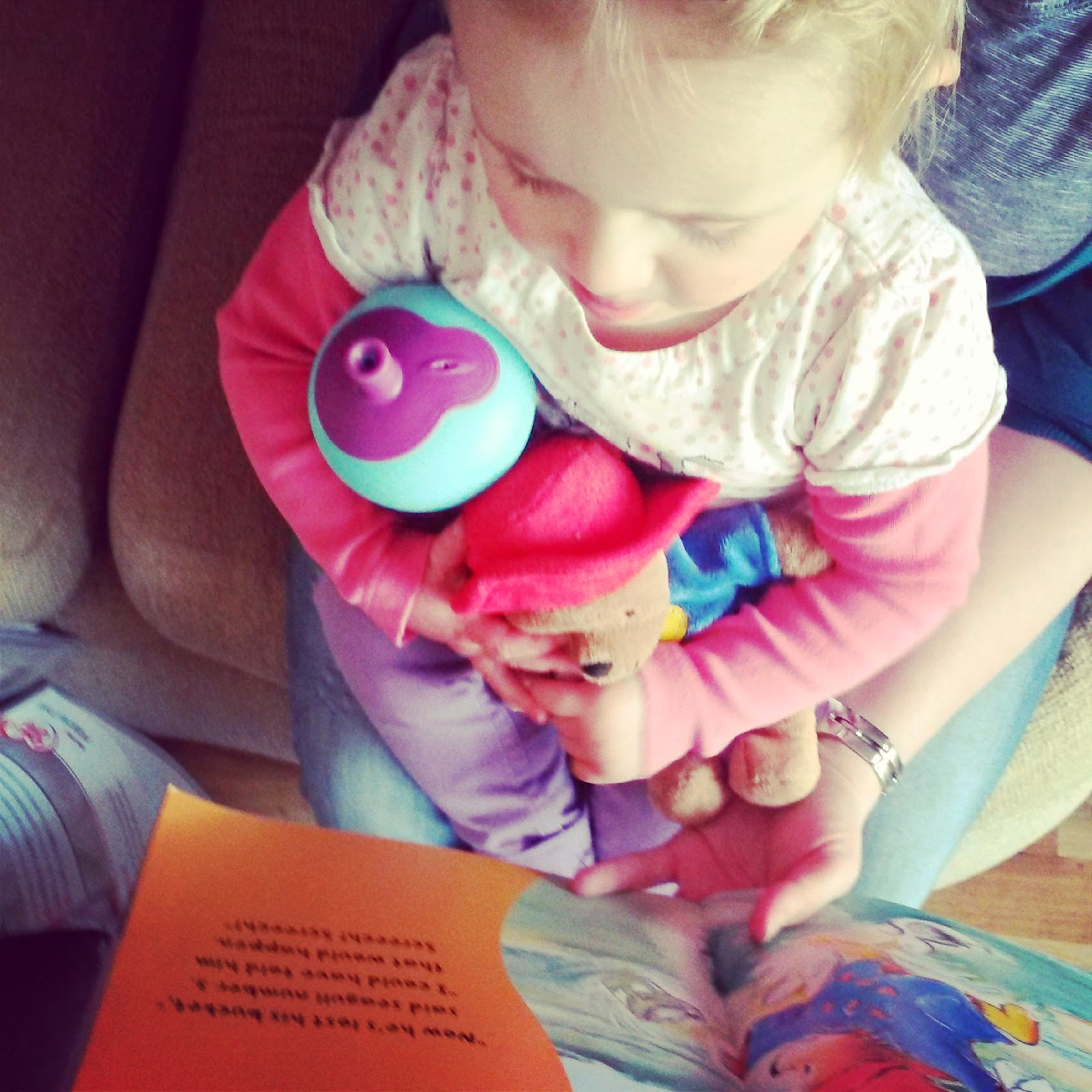 Paddington reads a Paddington book