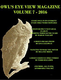 OWL'S EYE VIEW MAGAZINE VOLUME 7 - 2016