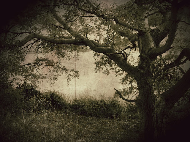 Fine art photography, landscape photography, fine art photography, López Moral photography, Contemporary art photographers, Pictorialism photo, photography art, the best photographer landscape, Landscape photography