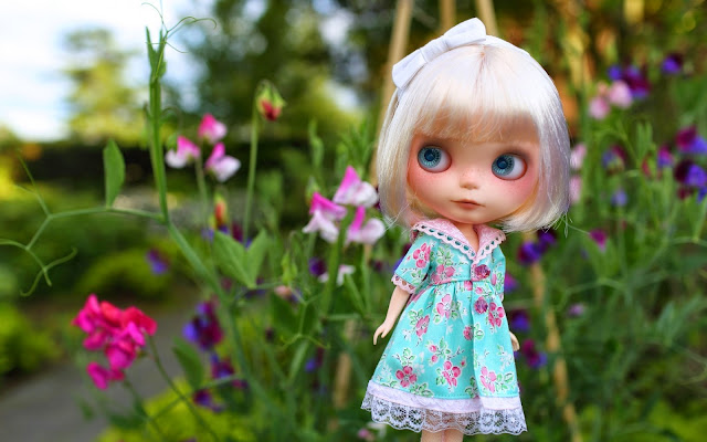 dolls Photo HD, Barbie Dolls Photo HD, Dolls Image, Barbie Dolls Image, Dolls Picture, Barbie Dolls Picture, Dolls Background, Barbie Dolls Background, Dolls Desktop PC Wallpaper, Barbie Desktop PC Wallpaper, The Latest Wallpaper High Quality