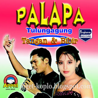 Palapa live in Tulungagung