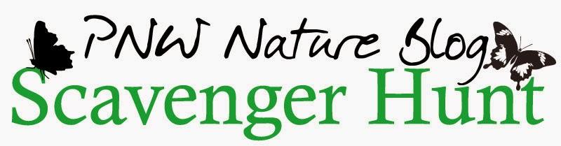 http://www.metrofieldguide.com/2015-pnw-nature-blog-scavenger-hunt